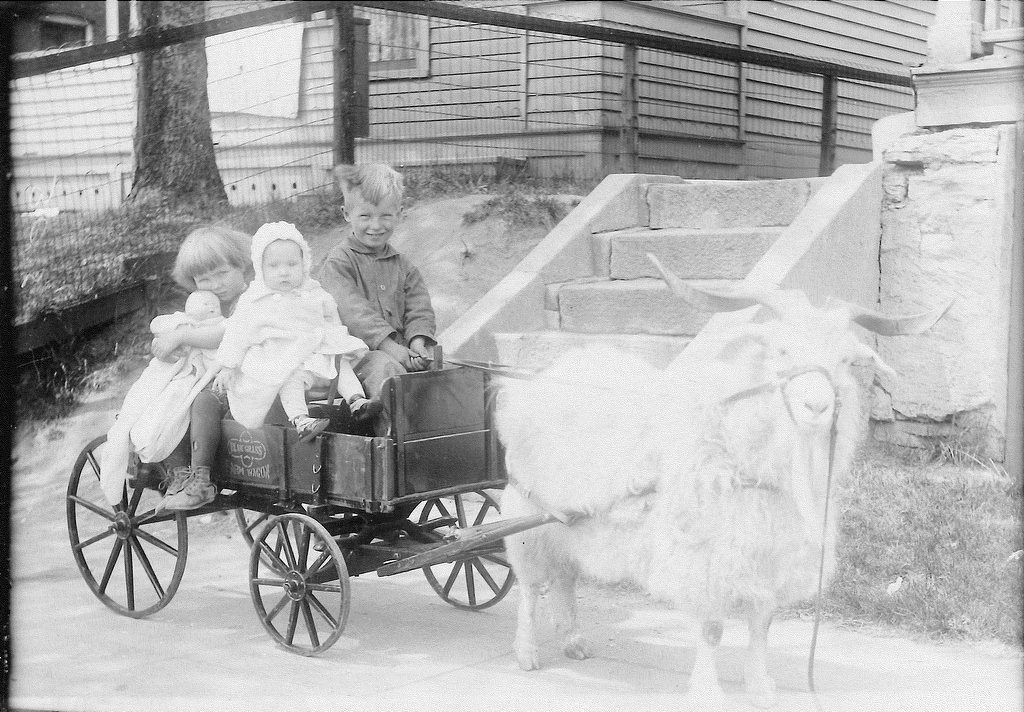 "Description of . Continues BEVERLY of St. Paul: ""The other picture is of me (Beverly, with the doll), my younger sister Jeannine, and my older brother Bobby. The picture was taken in 1928. I was told the photographer carried the doll with him for the girls to hold — and I'm sure I didn't want to give it up, as I never owned one. No money for a doll in our family."""