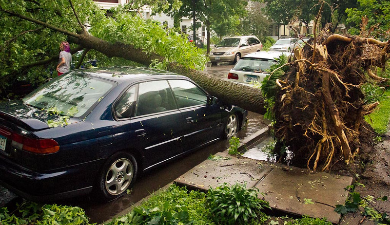 photo of South Minneapolis storm damage - June 21, 2013
