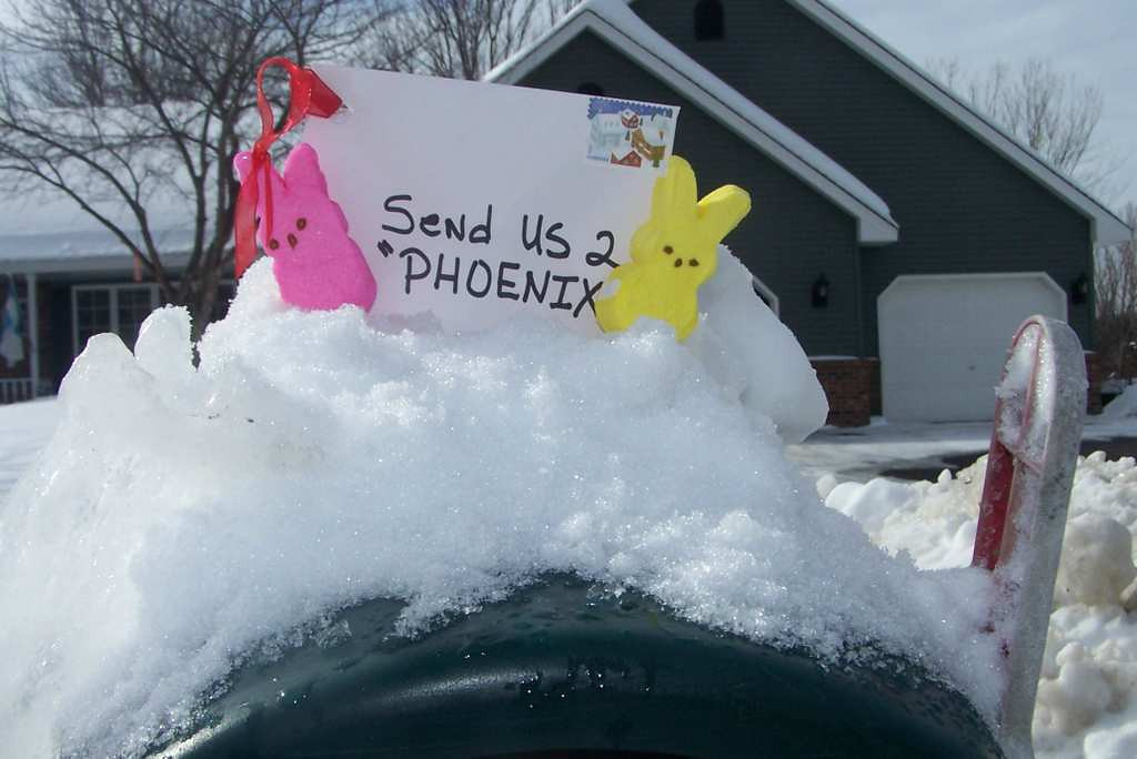 ". ""Send us 2 Phoenix,\"" by Marc Smith of White Bear Lake"