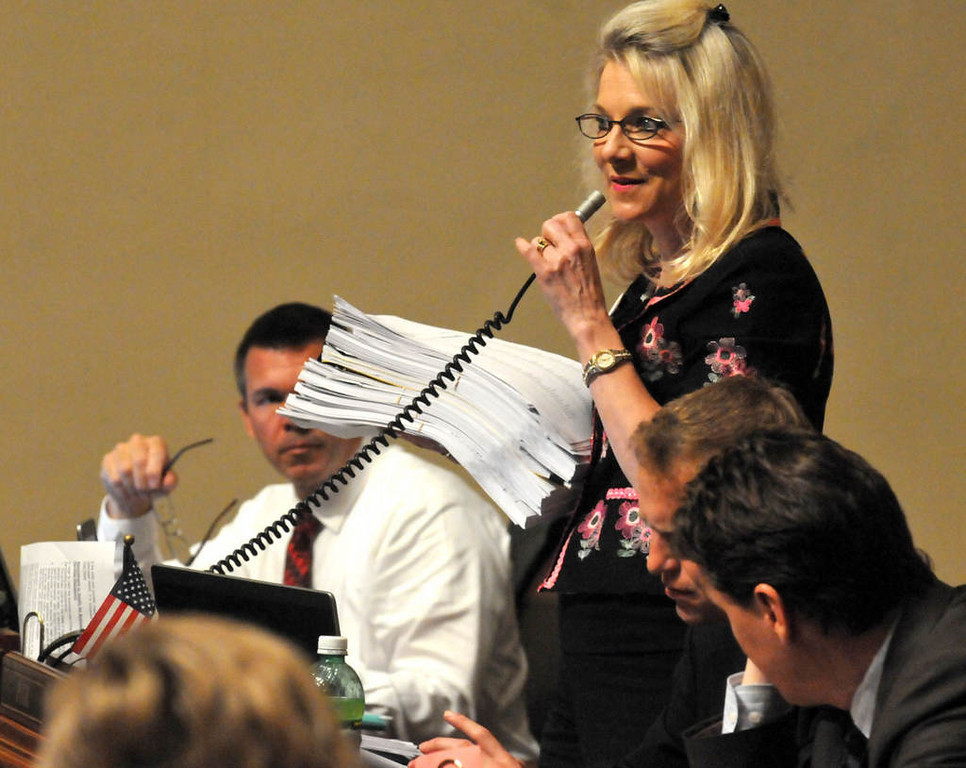 . Rep. Cindy Pugh, R-Chanhassen, holds legislation from the current session as she argues against a bill that would allow child care providers to  unionize. (Pioneer Press: John Doman)