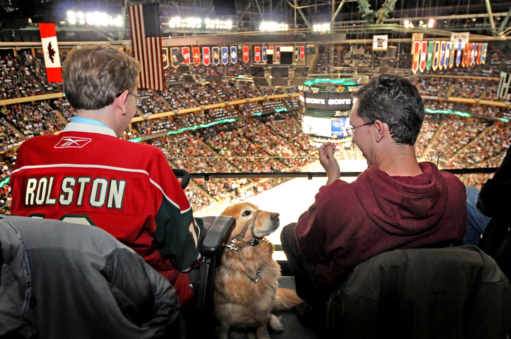 ". Not all dogs are lucky enough to get tickets to attend a Wild game, but Golden Retriever service dog Jenna joined Bryce Young, left, of St. Paul and his brother Brennan Young of Eau Claire for Game 3 of the Wild/Avalanche playoff series. ""She tends to fall asleep until things get exciting,\"" said Bryce. (Pioneer Press: Ginger Pinson)"