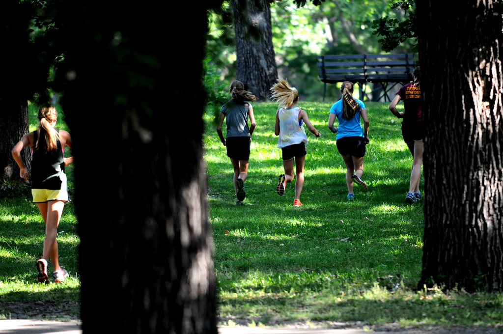 . Forest Lake cross country runners weave their way through the woods of Minnehaha Falls Park. (Pioneer Press: Jean Pieri)