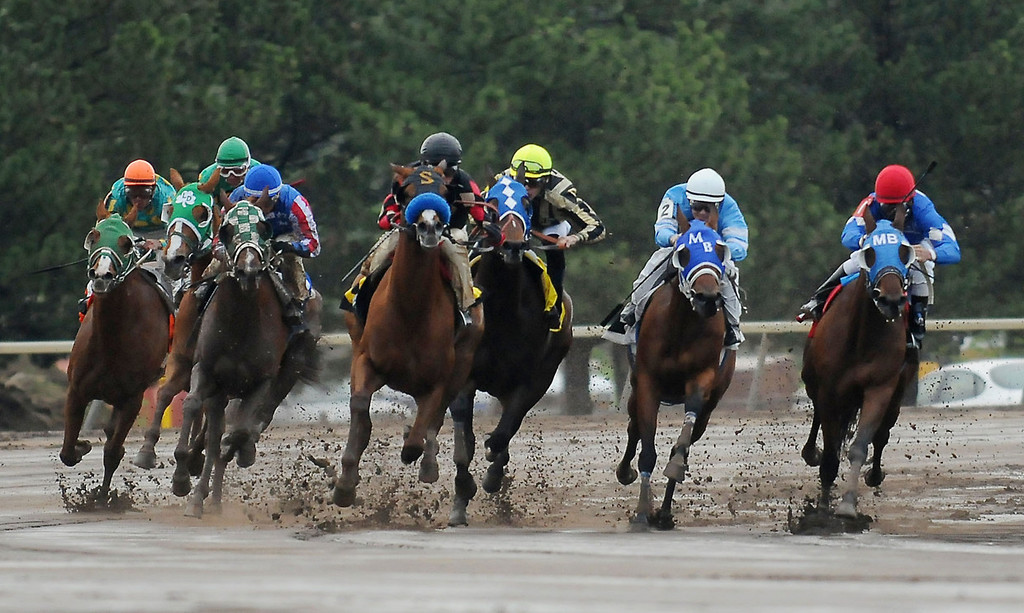 . Horses round the first turn on the way toward the near straightaway during the opening of the racing season at Canterbury Park in Shakopee Friday evening, May 17, 2013. (Pioneer Press: John Autey)