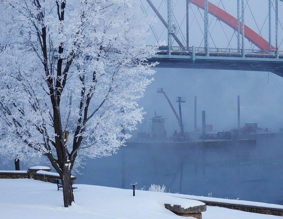 . Hoar frost on a tree by the Hastings bridges on March 7, 2013.Photo courtesy of Dave Youngren/Hastings Bridge Watch.