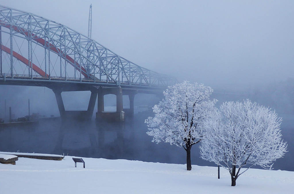 . Hoar frost on a tree by the Hastings bridges on March 7, 2013. Photo courtesy of Dave Youngren/Hastings Bridge Watch.