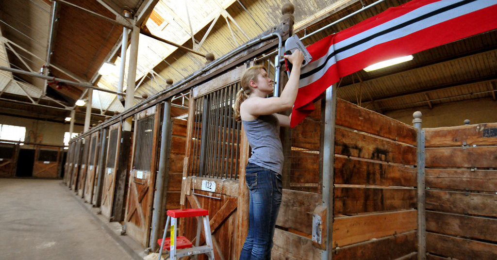 . Cheyenne Cairns of Stillwater decorates stalls in the horse barn on Monday, August 19, 2013 at the Minnesota State Fairgrounds that will be used by Valiant Stables of Stillwater for eight English Saddle bred horses competing early next week. (Pioneer Press: John Doman)