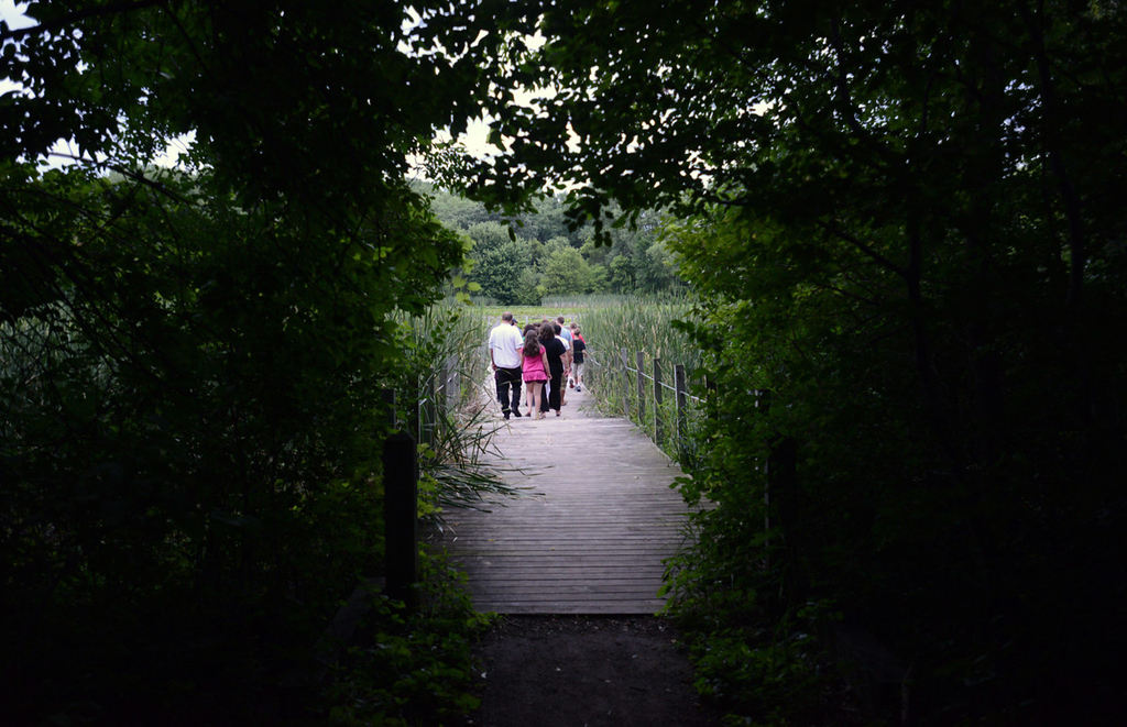 . The group exits the wooded area onto the boardwalk at Maplewood Nature Center during a bat outing.  (Pioneer Press: Chris Polydoroff)