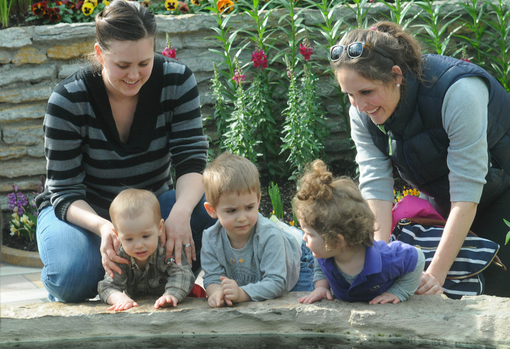 . Rachel Wesche, left, of Minneapolis and her sons George, 1 and Henry, 3, get acquainted with Caroline Carver, 2, and mother, Elizabeth, of St. Paul at the Sunken Garden on Tuesday.  (Pioneer Press: Scott Takushi)
