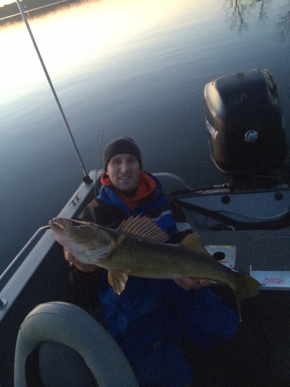 """. Alan Wilczek of Royalton had this to say about this 30-inch walleye: \""""First fish on opening morning!  Great way to start the season with a calm, beautiful sunrise on Lake Alexander with Ryan Schefers.  Looking forward to more days on the open water like this one!\"""" (Photo courtesy Alan Wilczek)"""