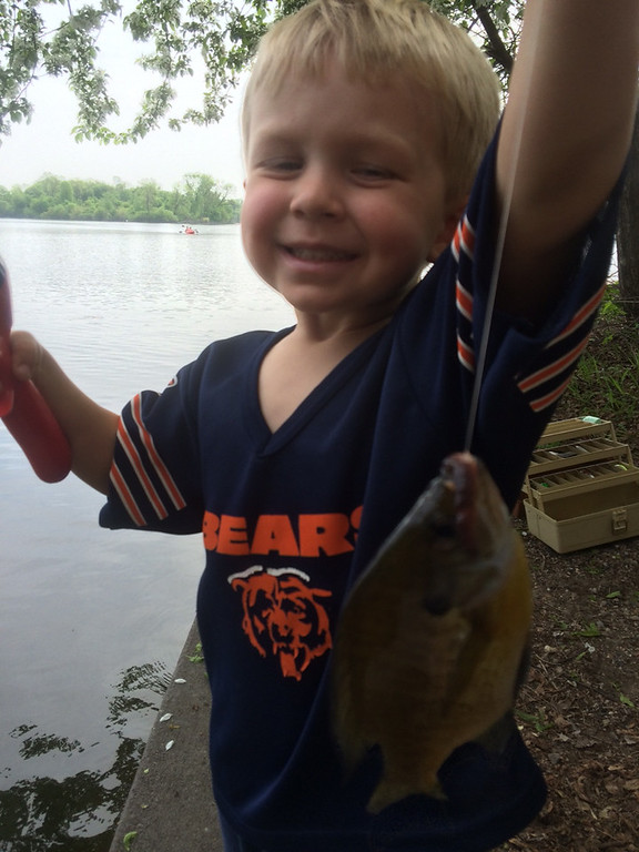 """. Three-year-old Cole Sitek from St. Paul was proud of this sunny he caught from Lake of the Isles for a reason. Reports dad Steve Sitek: \""""Cole\'s first time fishing and his first fish, on his first cast!  He was so proud. (Don\'t hold the bears jersey against us - he had a full Vikings uniform on later in the day!)\"""" (Photo courtesy Steve Sitek)"""