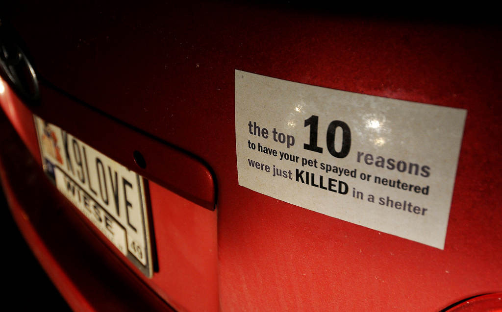 . The license plate and a bumper sticker on the car of Tara Harris of  Every Dog Counts Rescue. Harris transported a mother dog and her four one-week-old puppies from Indianapolis to Rockford, Ill. (Pioneer Press: Sherri LaRose-Chiglo)