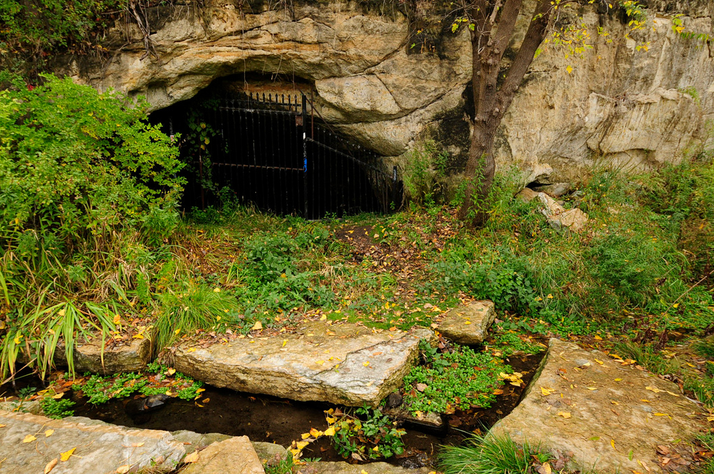 . The entrance to North Star Brewery Cave, which in 1855 was used to store beer from a brewing facility on the site, is located within St. Paul\'s Bruce Vento Nature Sanctuary.   (Pioneer Press: Scott Takushi)