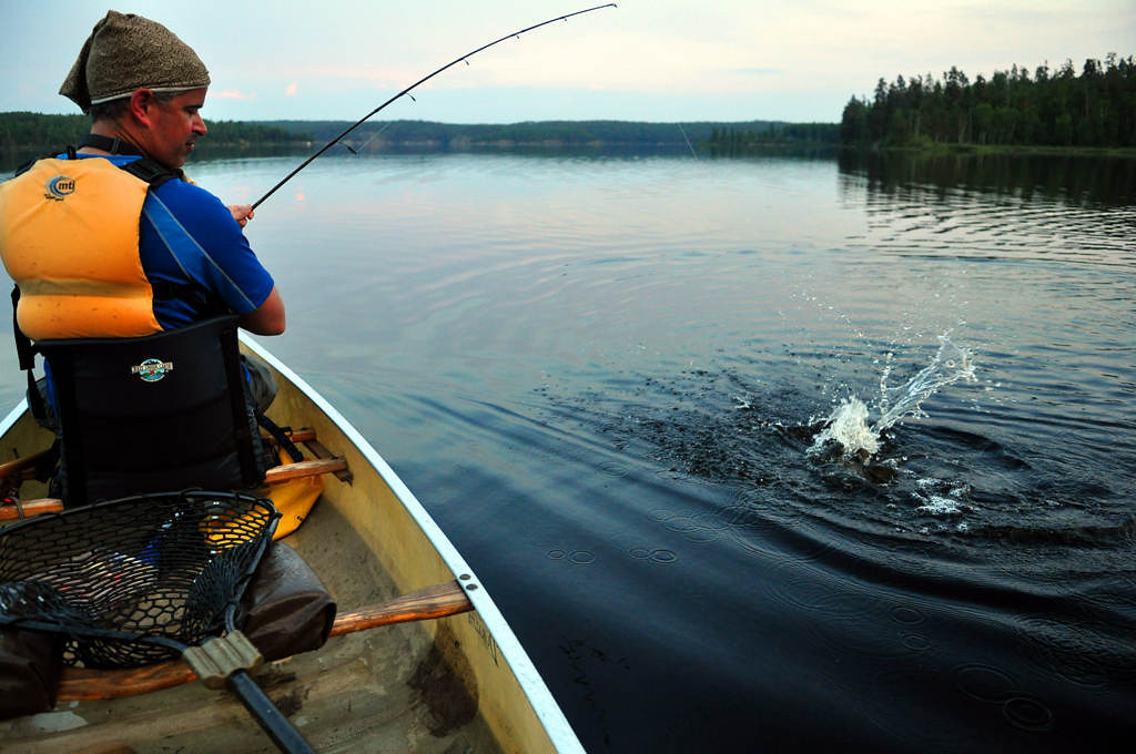 . Steve Safranski of Eden Prairie battles a northern pike in Woodland Caribou Provincial Park. The fish weren\'t particularly large, but the action was outstanding.