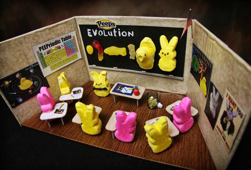 ". ""Peep Evolution Lesson,\"" by Jill Schaefer of Minnetonka"