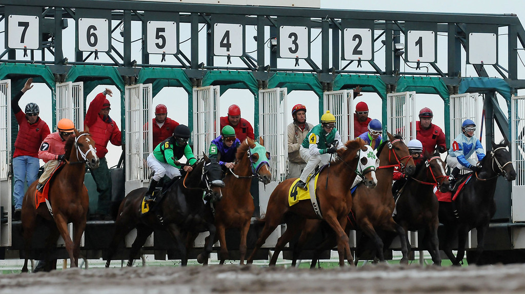 . Horses leave the gate in the first race of the 2013 racing season at Canterbury Park.  (Pioneer Press: John Autey)