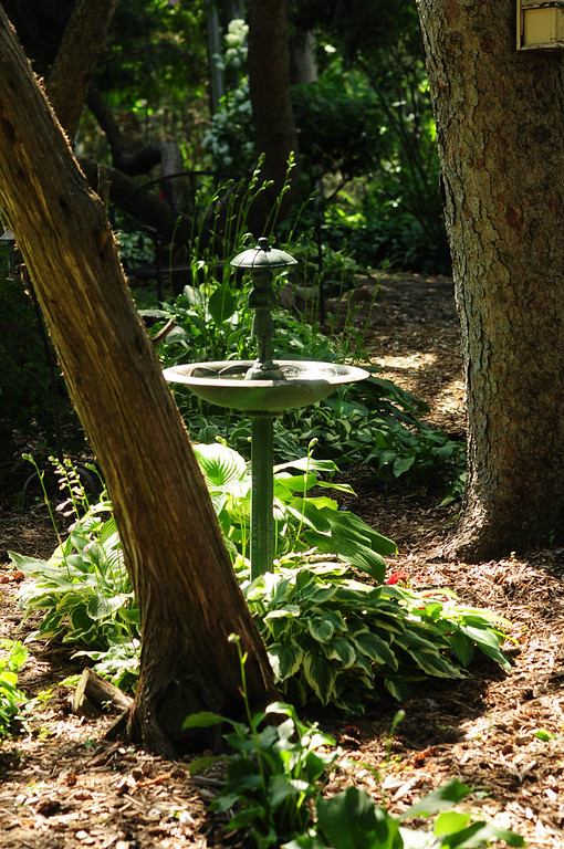 . This charming garden, part of the property of original owner Dr. Tregilgas.