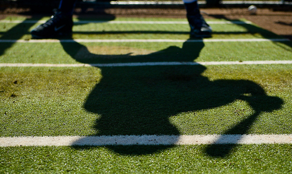 . A batter\'s shadow is cast as he takes hacks in the cage. (Pioneer Press: Ben Garvin)