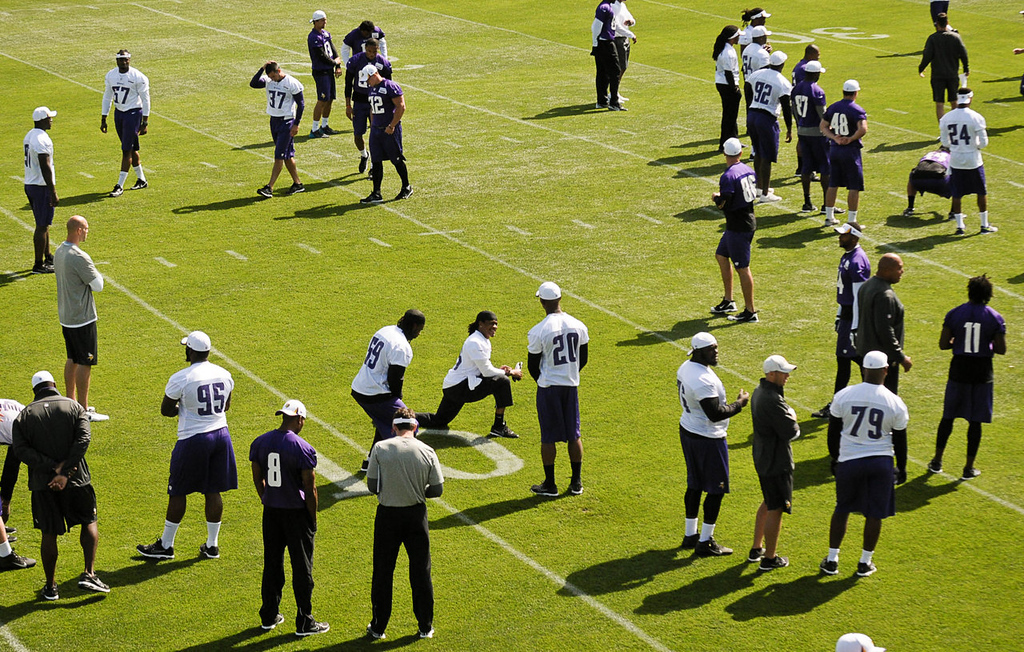 . Players take the field for a morning walk-through. (Pioneer Press: Ben Garvin)