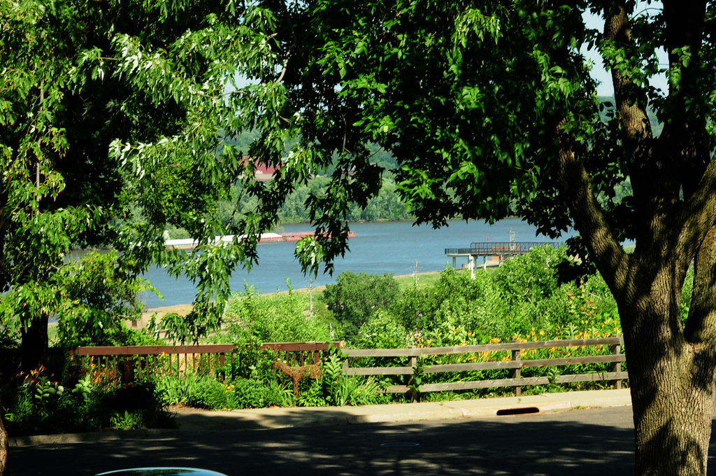 """. The view of the Mississippi River from the dining room of  the \""""Forsythe House\"""" owned by Carol  Mladek."""