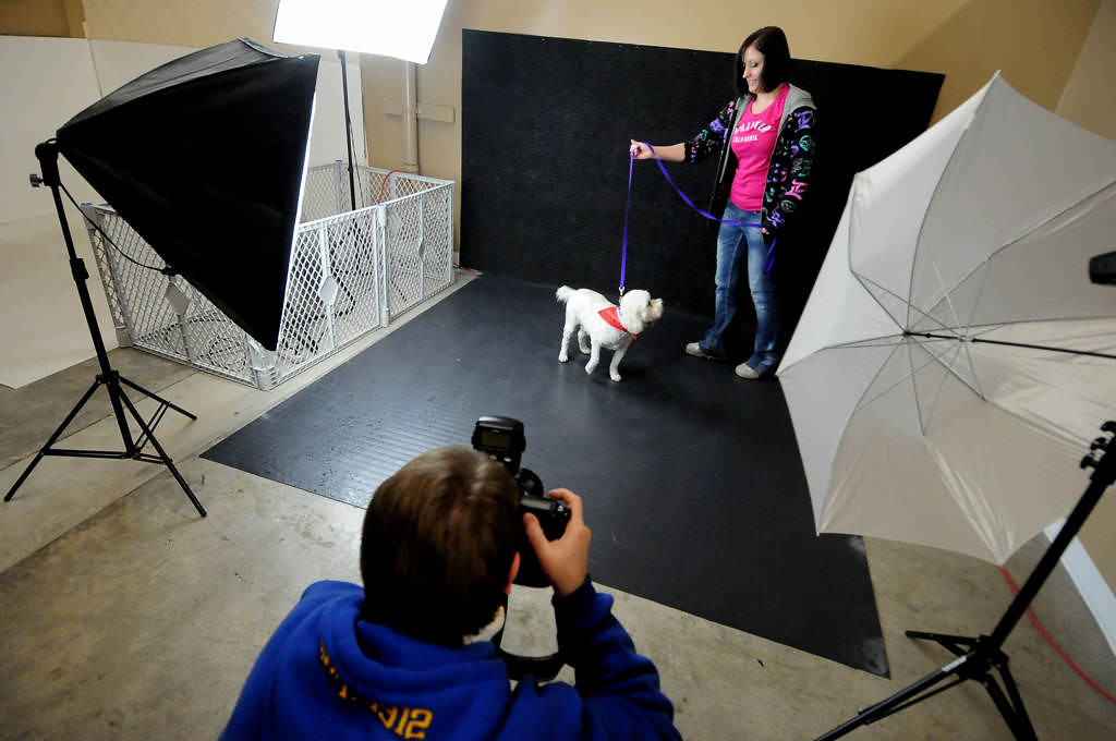 . Sunny is photographed in a photo studio at MARS in Brooklyn Park on Saturday night by volunteer photographer Sue Thomas, bottom, with the help of assistant Kris Pearson. The dogs are professionally photographed in the hopes of a quick adoption. (Pioneer Press: Sherri LaRose-Chiglo)