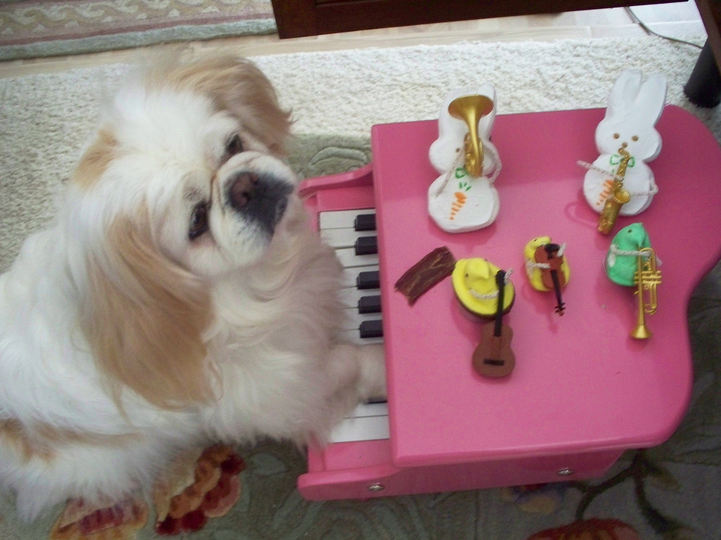 """. \""""Ms. Polly and the Playful Peeps,\"""" by Lydia Montgomery, St. Paul"""