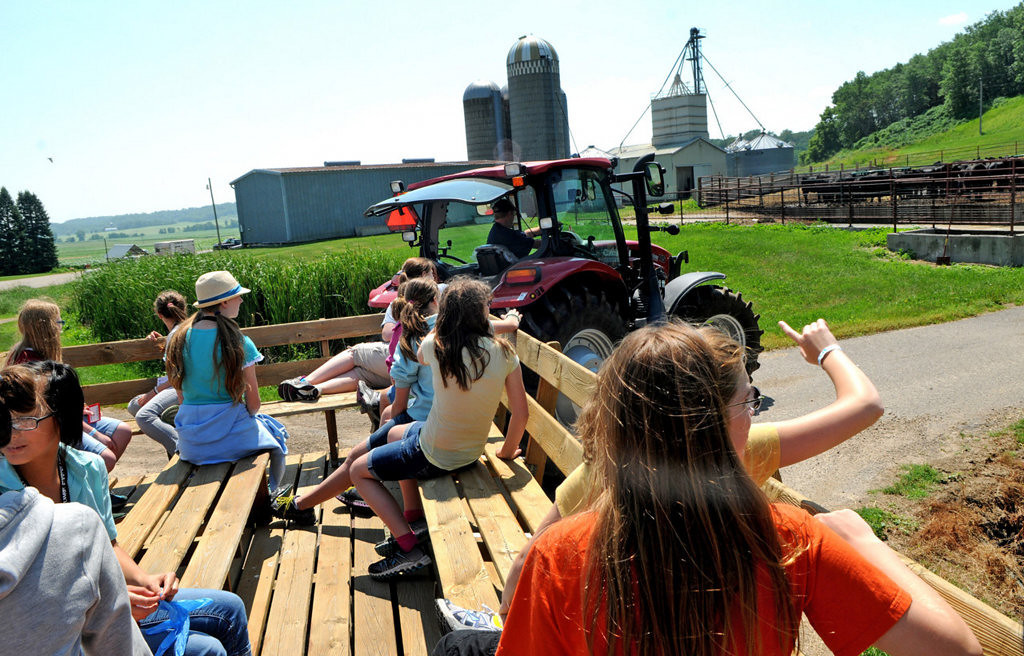 . Eighth-grade students on a tour of Mann Valley Farm during the Camp Badger Exploring Engineering program at University of Wisconsin-River Falls. (Pioneer Press: Jean Pieri)