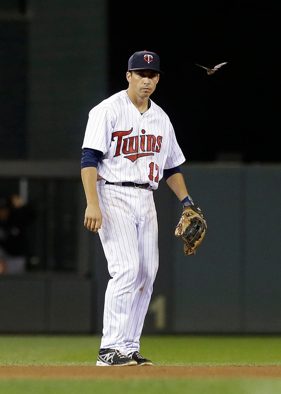 . Shortstop Doug Bernier keeps an eye on a bat that flew around Target Field during the game. A security guard caught the bat with a towel after it landed near third base. (AP Photo/Jim Mone)